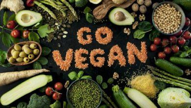 Photo of Vegan Kimdir?