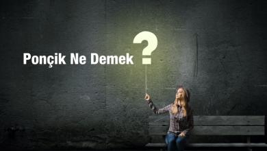 Photo of Ponçik ne demek? Ponçik nedir?