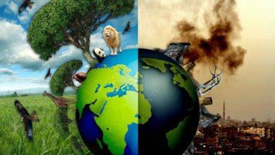 Photo of Çevre Kirliliği Ve Sebepleri Nelerdir?