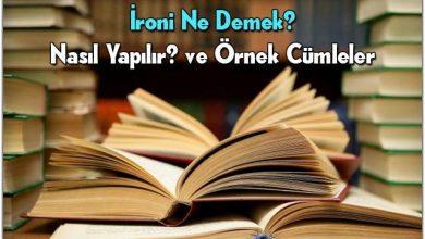 Photo of İroni Ne Demek?