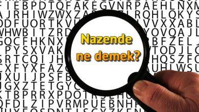 Photo of Nazende Ne Demek?
