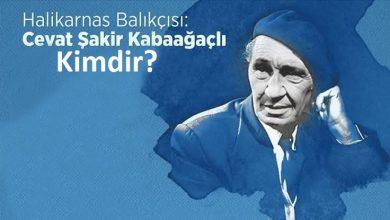 Photo of Halikarnas Balıkçısı Kimdir?