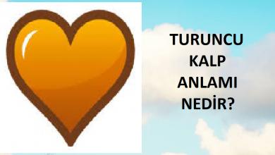 Photo of Turuncu Kalp Anlamı Nedir?